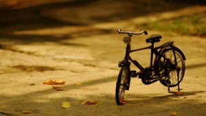 Old_Time_Bicycle_by_khairulrahman
